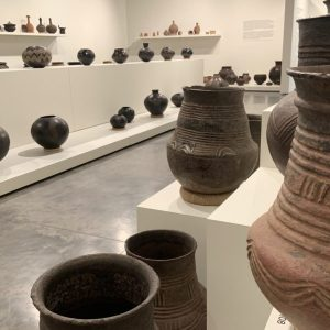 Shattering Perspectives pottery exhibition installed in the Gregory Allicar Museum